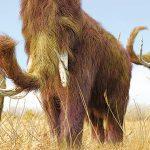 Επιστροφή των μαμούθ με κλωνοποίηση