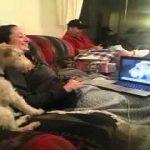 Σκύλος ιντερνετάκιας μιλάει στο Skype με το φίλο του